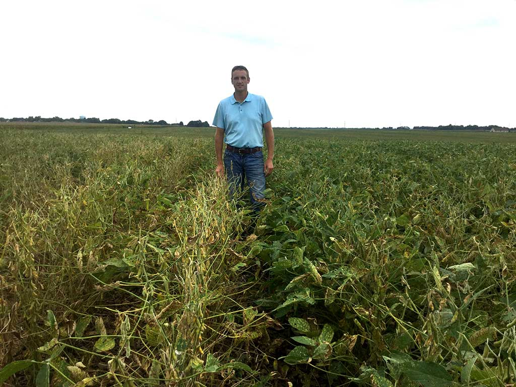 Jake Vossenkemper standing between rows of soybeans, one row treated with ILeVO and health, the other non-treated and sickly looking.