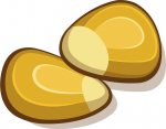 Graphic of two corn kernels.