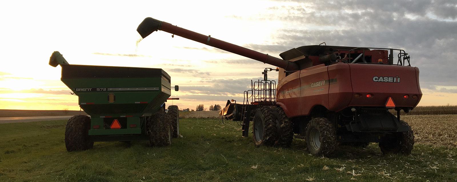 Grain truck and combine