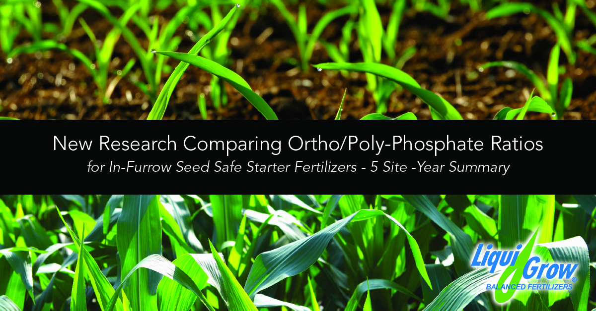 Blog Banner for Poly Phosphate study